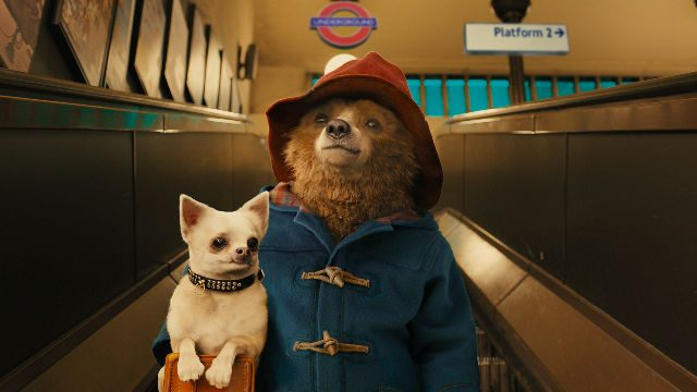 'Paddington 3' to Begin Filming in Early 2022