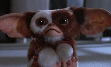 'Goosebumps' Screenwriter Takes On the 'Gremlins' Remake