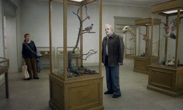'A Pigeon Sat on a Branch Reflecting on Existence' Chosen as Sweden's Oscar Entry