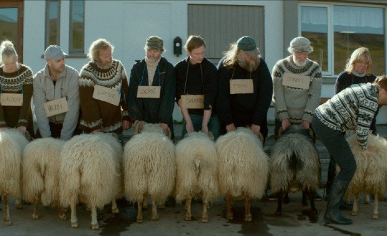 Iceland's Oscar Submission 'Rams'
