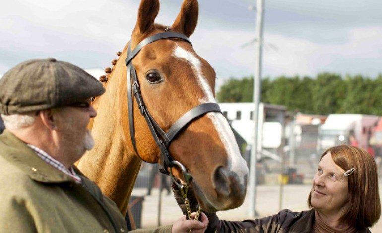 Check Out the New Trailer for Sundance Documentary Winner 'Dark Horse'