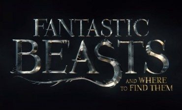 'Fantastic Beasts and Where to Find Them' Has a Sequel Planned for 2018