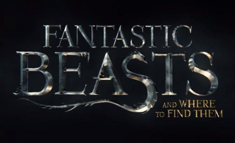 Check Out the First Trailer for 'Fantastic Beasts and Where to Find Them'
