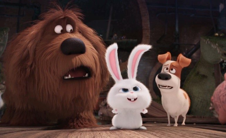 First Reviews For 'The Secret Life of Pets' Showcase A Fun Animal Romp