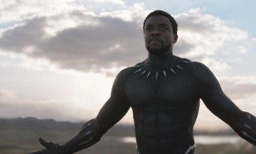 'Black Panther' Officially Becomes the Highest Grossing Domestic Marvel Film