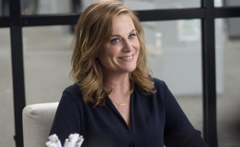 Amy Poehler Announces 'Wine Country' Movie