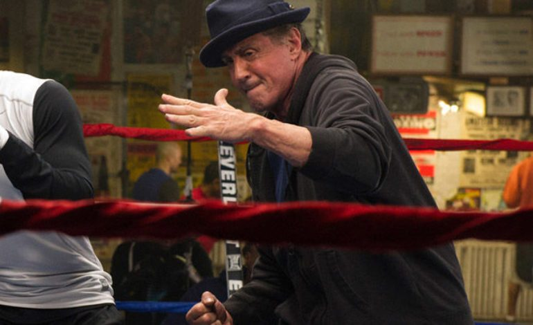Sylvester Stallone to Create Movie About Trump-Pardoned Boxer Jack Johnson