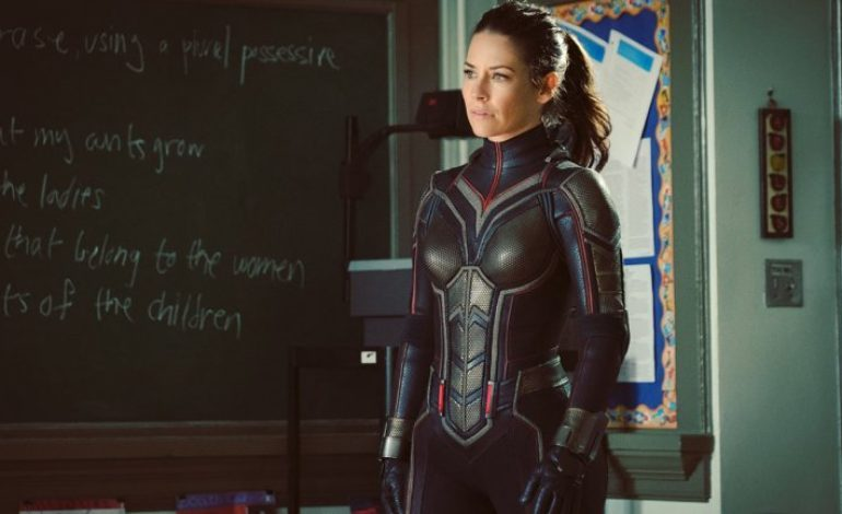 Evangeline Lilly Takes the Sting Out of a 'Wasp' Solo Marvel Movie