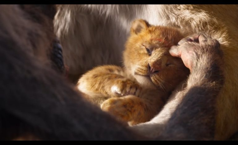 'The Lion King' CinemaCon Footage Showcases Impressive CGI