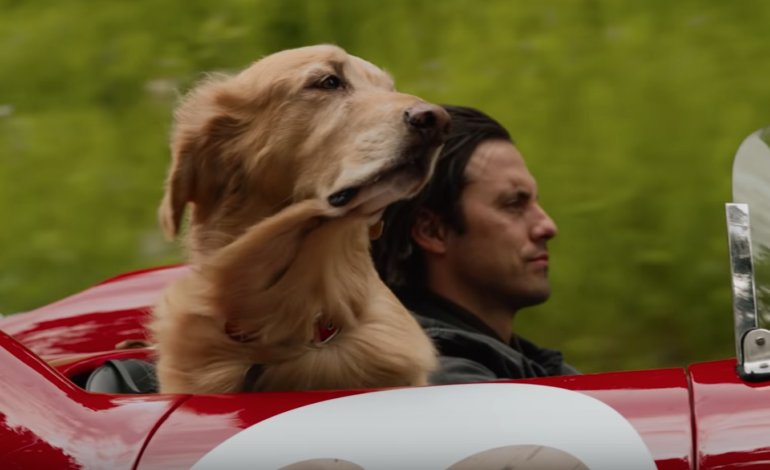 Kevin Costner Voices Dog in First Trailer for 'The Art of Racing in the Rain'