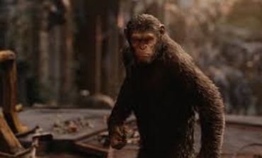 Director Wes Ball Working On Potential 'Planet of the Apes' Film