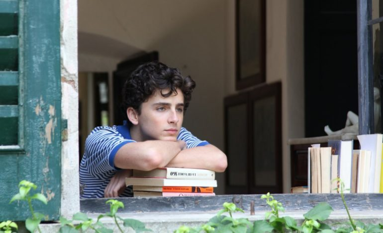 Timothée Chalamet to Play Bob Dylan in James Mangold's Upcoming Biopic