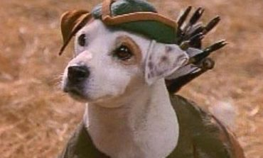 Universal to Adapt PBS Series 'Wishbone' As A Feature Film