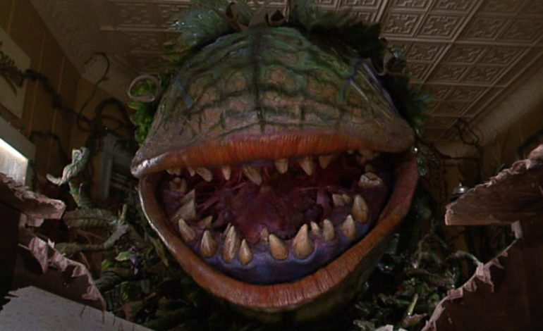 The Repercussions Of Codependency in 'Little Shop Of Horrors'